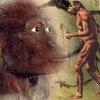 O fosila de australopitec schimba conceptia cercetatorilor despre evolutie