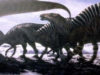 Iguanodoni
