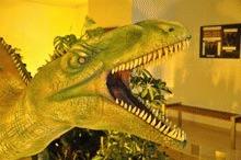 Dinozauri in marime naturala expusi la Iasi