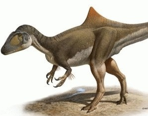 Dinozaurul Quasimodo, descoperit in Spania