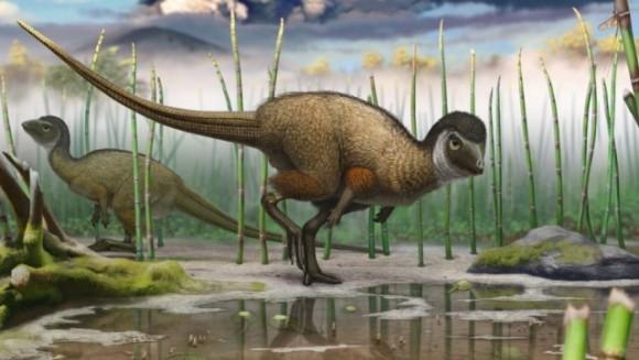 Toţi dinozaurii aveau pene