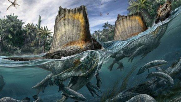 Spinosaurus aegyptiacus, dinozaurul înotător care mânca rechini