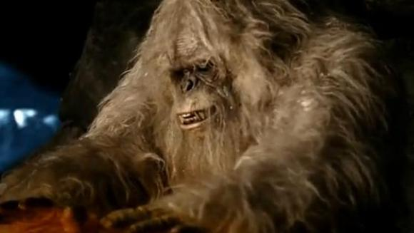 Teorii au fost contrazise. Ce este, de fapt, Yeti – Omul Zăpezilor?
