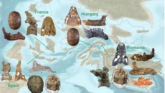 Cum au dispărut dinozaurii. Studiul condus de un român dă un răspuns clar