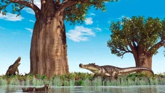 Crocodilul cu picioare de dinozaur – a trăit cu milioane de ani înaintea dinozaurilor