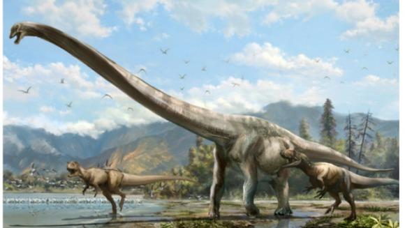 Descoperirea Dragonului Qijang: gâtul lui măsoară cât jumătate din corp