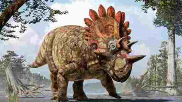 """Fosilele unei noi specii de dinozaur, supranumit """"Hellboy"""", descoperite în Canada"""