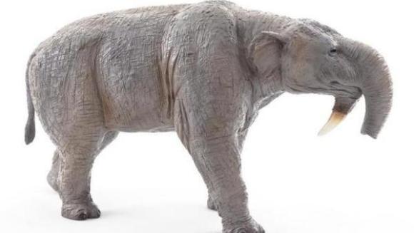 Descoperire de excepţie pentru România: Schelet al strămoşului elefantului, vechi de 7-8 milioane de ani, găsit în Vaslui