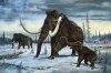 Ham din pielea unui mamut