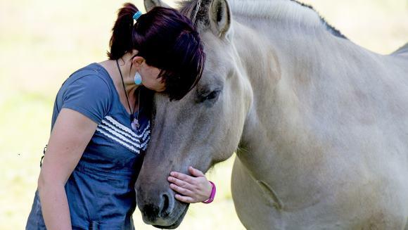 Caii au învăţat să comunice cu oamenii în doar două săptămâni, exersând 15 minute pe zi