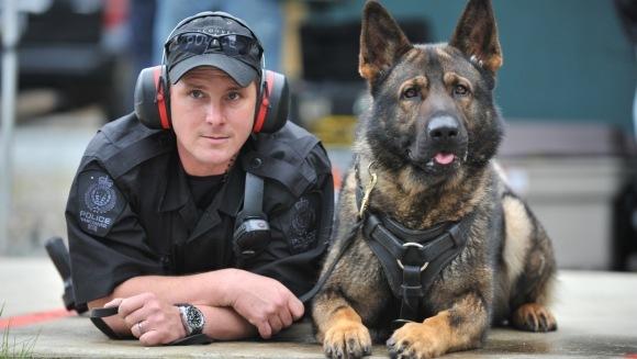 Câini în slujba legii