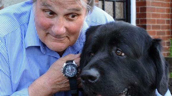 Câinele cu un ceas... în burtă!