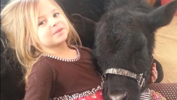 O fetiţă adorabilă argumentează prezenţa unei vacuţe negre în casă  - VIDEO