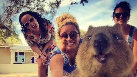 Cel mai simpatic trend din lume: selfie-urile cu cel mai drăguț animal - Galerie Foto
