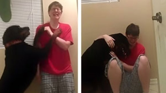 Un clip extrem de emoţionant arată cum un câine îşi opreşte stăpâna bolnavă de sindromul Asperger în timpul unei crize