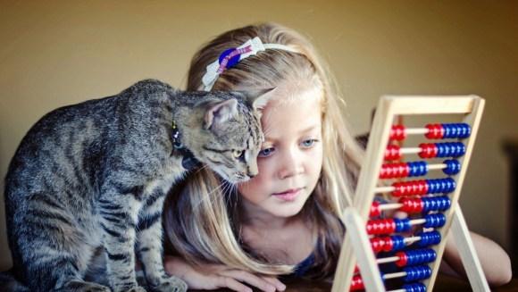 9 întrebuințări ale pisicii, altele decât pe post de animăluț de companie – Foto și VIDEO