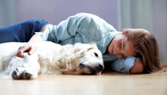 Adevărul despre oamenii care iubesc animalele mai mult decât pe semenii lor – FOTO și VIDEO