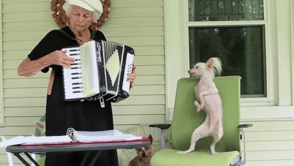 Câinele dansează fericit pe muzica bunicii – VIDEO adorabil