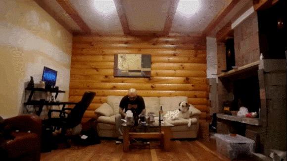 Câinele extrem de pofticios, se uită ţintă la stăpânul lui care mănâncă. Cum reacţionează când este observat? – VIDEO