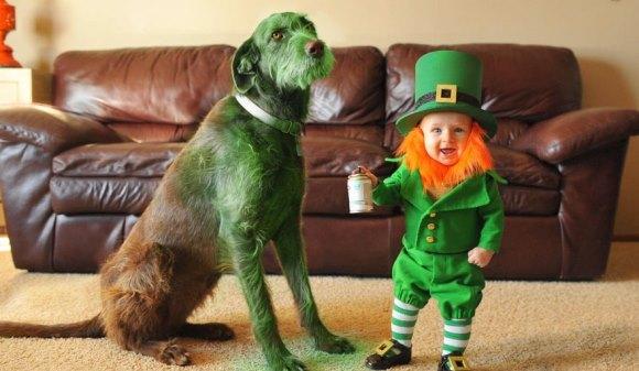 Sărbătoarea Sf. Patrick: Şi-a transformat băiatul de 6 luni în cel mai adorabil spiriduş şi l-a pozat alături de câinele său - Galerie Foto