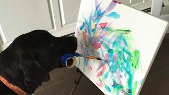 Faceți cunoștință cu DogVinci, câinele care creează și vinde opere de artă - Galerie Foto