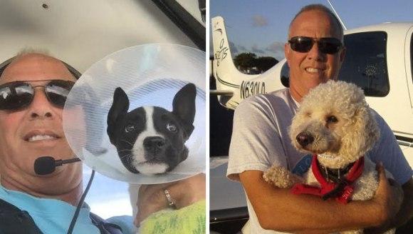 Bărbatul care transportă voluntar animale cu propriul avion, pentru a le oferi un trai mai bun - Galerie Foto