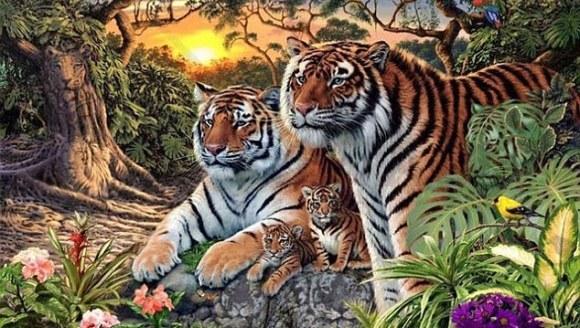 Câți tigri vedeți în imagine? Fotografia care a luat cu asalt internetul – Foto