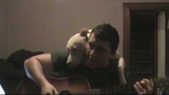 Îi face câinelui său o serenadă. Reacția patrupedului? Neprețuită – VIDEO