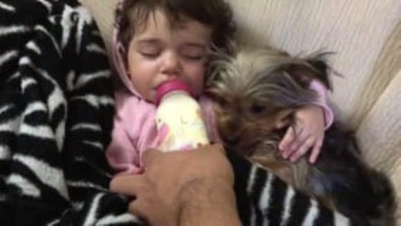 Clip adorabil: o fetiță adoarme ținându-și cățelușul în brațe – VIDEO