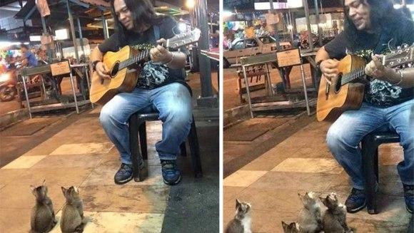 S-au adunat să asculte muzica omului pe care toată lumea îl ignora... VIDEO