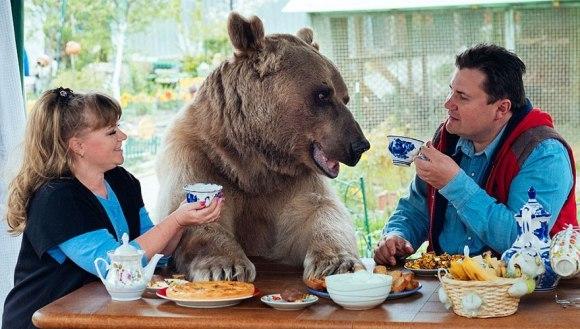 Au adoptat un urs orfan acum 23 de ani și încă locuiesc împreună - Galerie Foto și VIDEO
