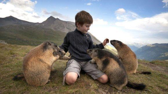 Cei mai buni prieteni ai acestui băiețel au patru picioare, o coadă stufoasă și... sunt departe de ceea ce te-ai aștepta să fie - Galerie Foto)
