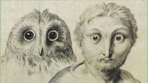 Cum ar fi arătat oamenii, dacă ar fi evoluat din diferite specii de animale? - Galerie Foto