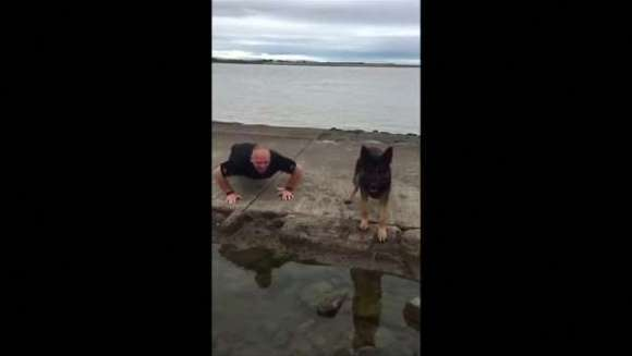 Câinele face flotări, pentru a atrage atenția asupra veteranilor care se sinucid – VIDEO