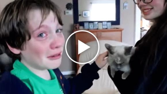 Au început să plângă  în hohote, când mămica le-a găsit pisica pierdută de luni bune – VIDEO emoționant