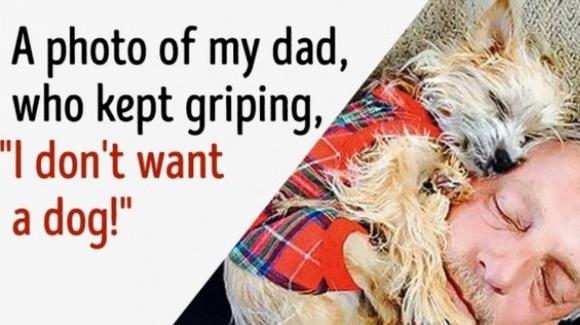 """Imagini haioase cu taţi care susţineau sus şi tare: """"Nu vreau să aud de câine în casă!"""" – Foto"""