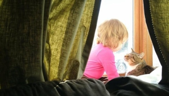Imagini care ne dovedesc: pisicile au inima de aur -  Foto