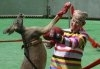 Olimpiada animalelor din Shanghai