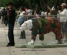 Expozitie de animale pe cale de disparitie in Mexic