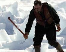Jurnalisti arestati pentru ca au filmat masacrul focilor