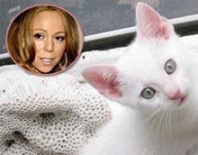 Mariah Carey vrea 20 de pisici albe si 100 de porumbei pe scena de Craciun