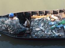 Politia Deltei a confiscat sute de kilograme de peste