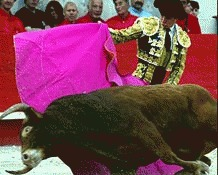 Dalai Lama se opune luptelor cu tauri din Spania