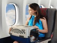 Animalele de companie vor avea liber la circulatia in UE, din 2011