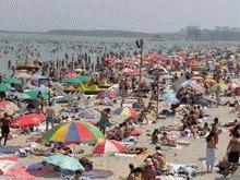 Un peste veninos inteapa turistii de pe litoral