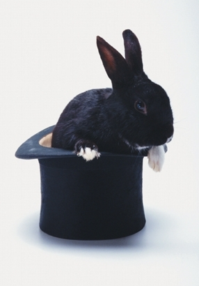 Unui magician i s-a furat palaria su iepure cu tot !