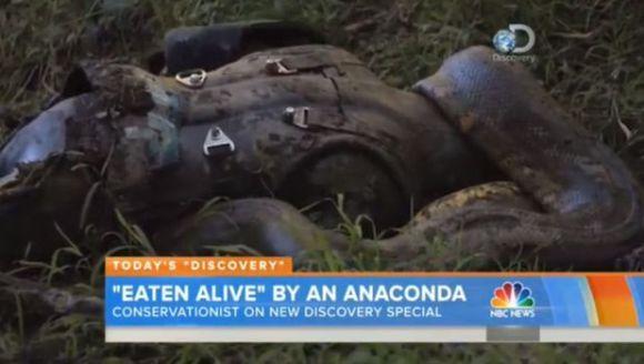 A fost difuzat! Ce s-a întâmplat cu naturalistul care s-a lăsat înghiţit de anaconda - Galerie Foto