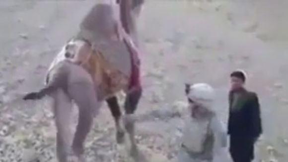 Karma nu iartă: ce păţeşte acest soldat, pentru că vrea să lovească o cămilă