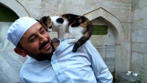 Moschee din Istanbul invadată de pisici, cu permisiunea imamului - Galerie Foto