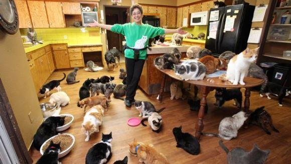 Femeia care cedat casa celor 1000 de pisici ale sale. Acum, trăieşte într-o rulotă